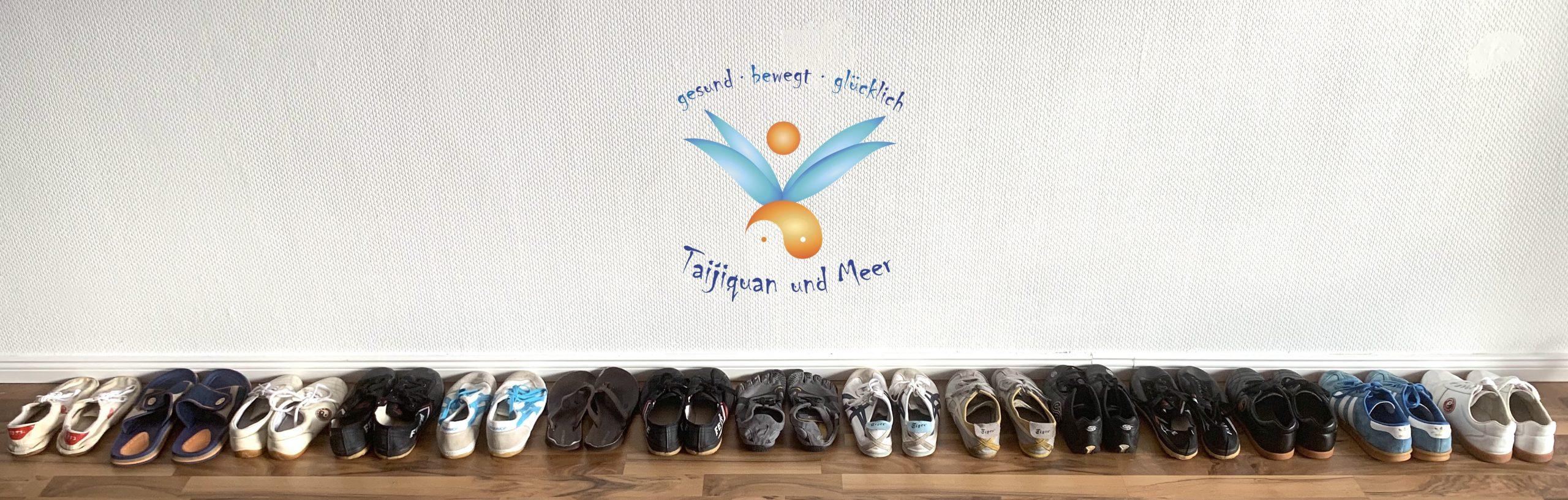 Trainings-Schuhe Taijiquan, Schülermeinungen